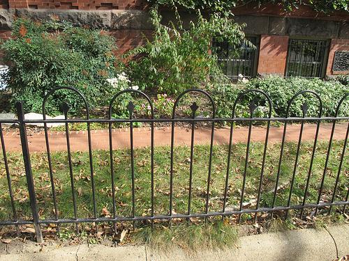 Dear pop wrought iron type fence popville