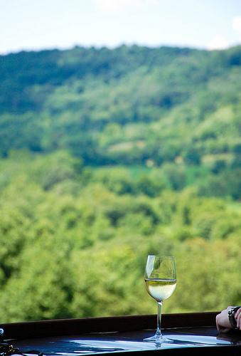 virginia_maryland_winery