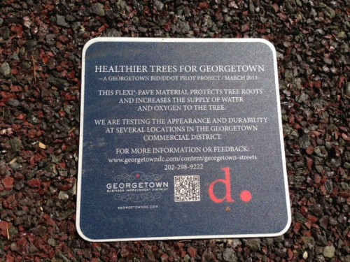 georgetown_tree_plaque