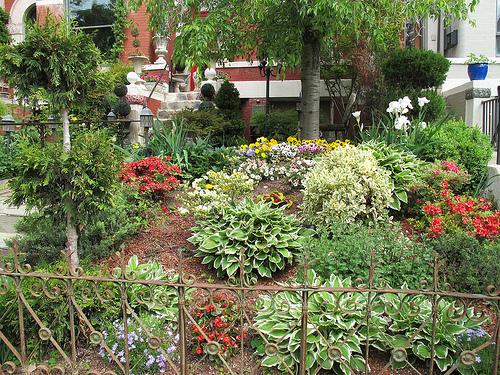 columbia_heights_garden