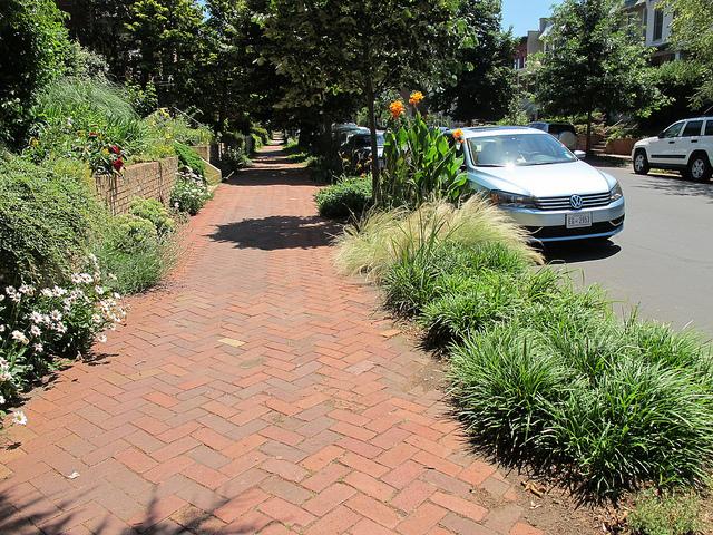 curb_garden_popville