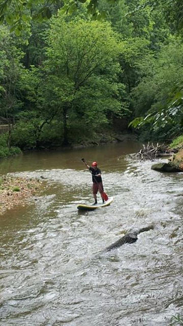 stand_up_paddler_rock_creek