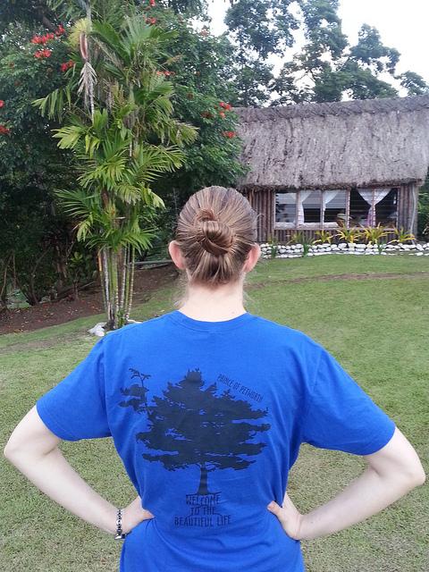 PoPville Fiji