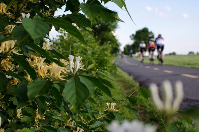 bike_touring_dc_advice