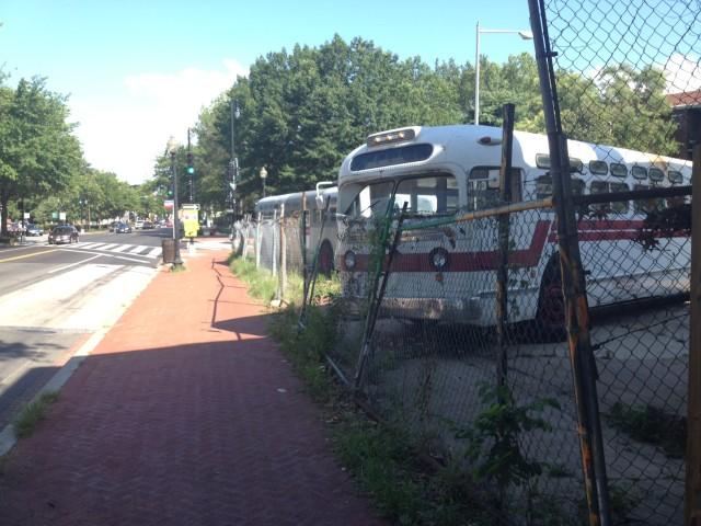 buses_bloomingdale