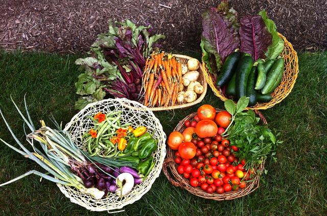 garden_contest_winner_popville