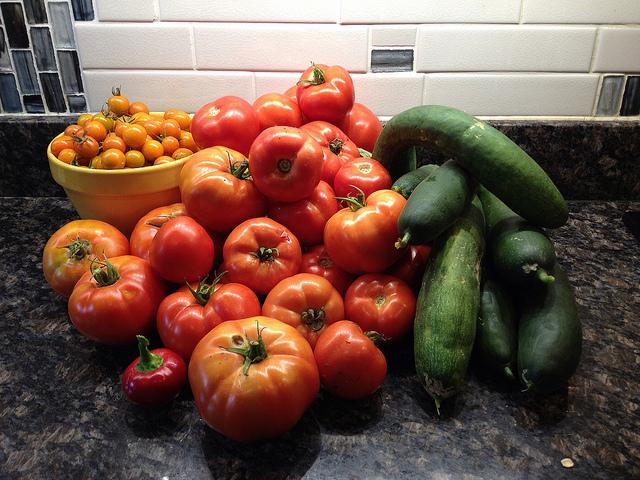 tomato_garden_contest_popville