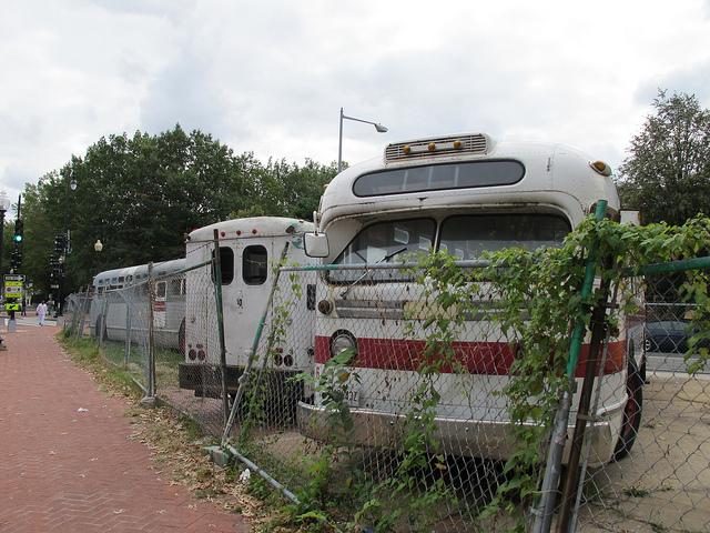 bloomingdale_buses_fojol