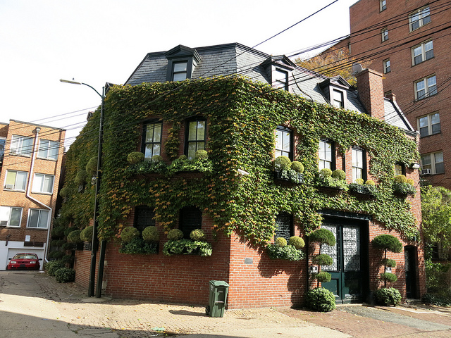 dupont_alley_house