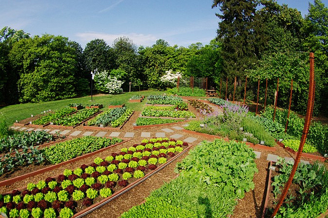 garden_composting_dc