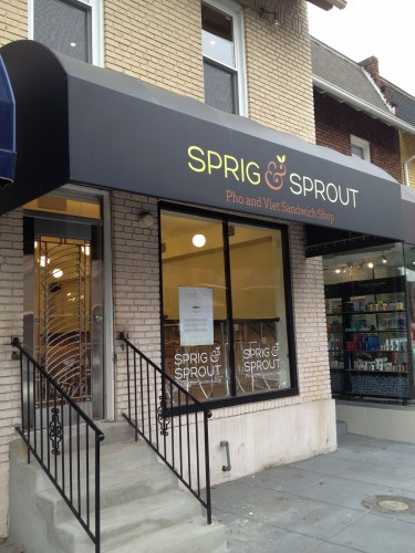 sprig_and_sprout_glover_park