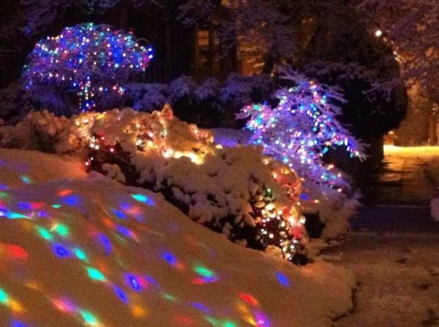 lights on Webster St