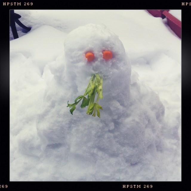 snowmainfail