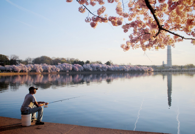 Erin Kelly - Early Morning Fishing