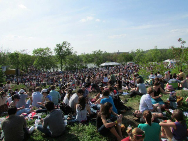 perfect-day-for-festival