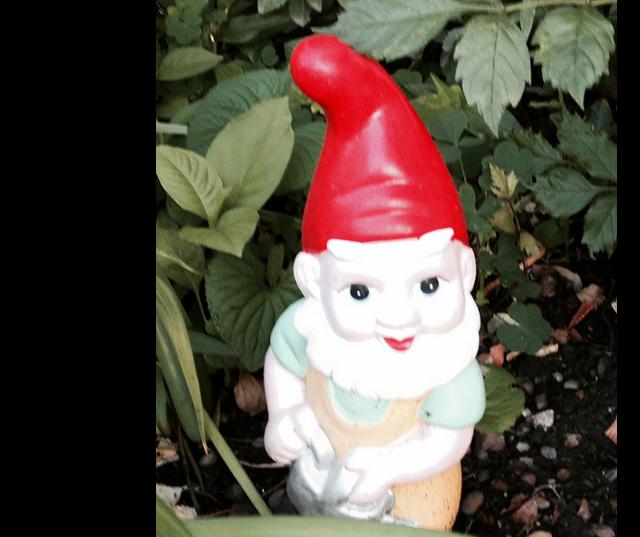 gnome_dupont