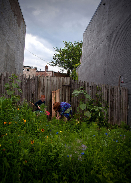 vacant_lot_gardening_bill_dc