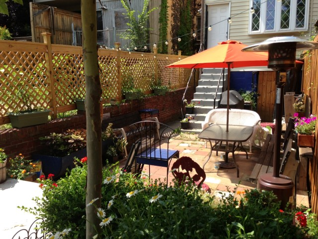 columbia_heights_back_yard