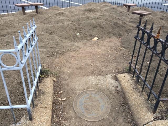 Sonny Bono Memorial Park_dc