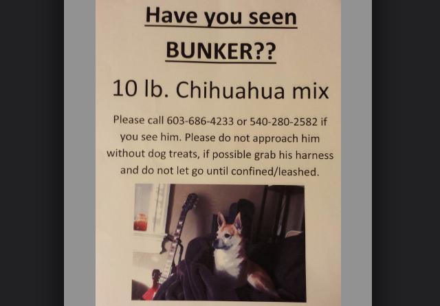 bunker,png