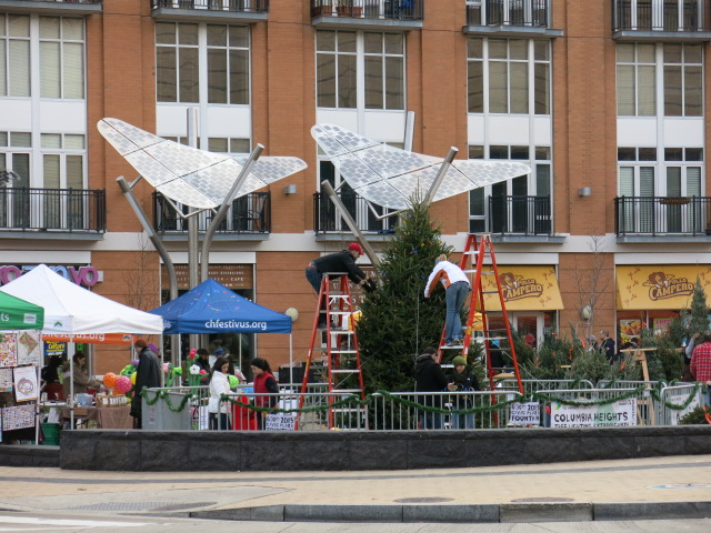 columbia_heights_christmas_tree