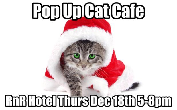 popup_cat_cafe