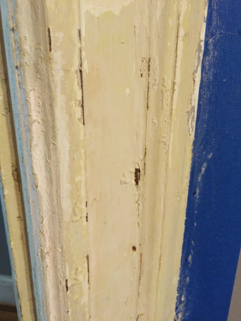 Doorstripping