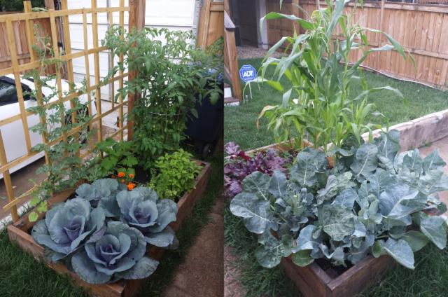 garden sherman cir