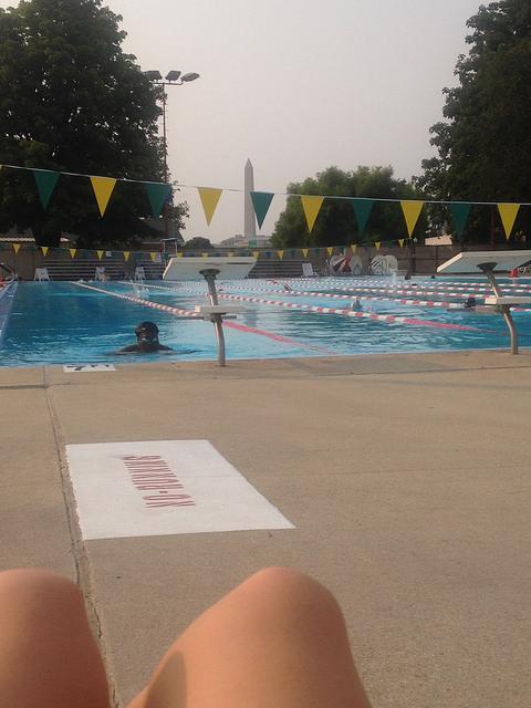 potomac pool