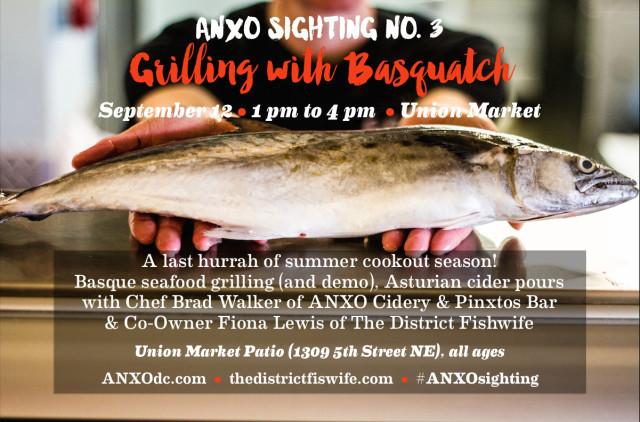 anxo sighting 3 graphic
