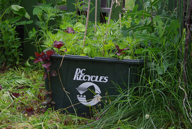 recycle_Dc