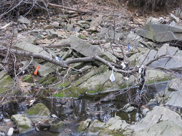 rock creek cleanup