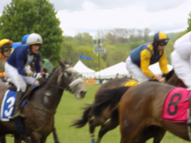 council race