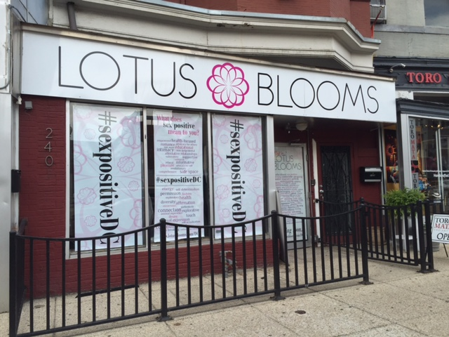 lotus-blooms