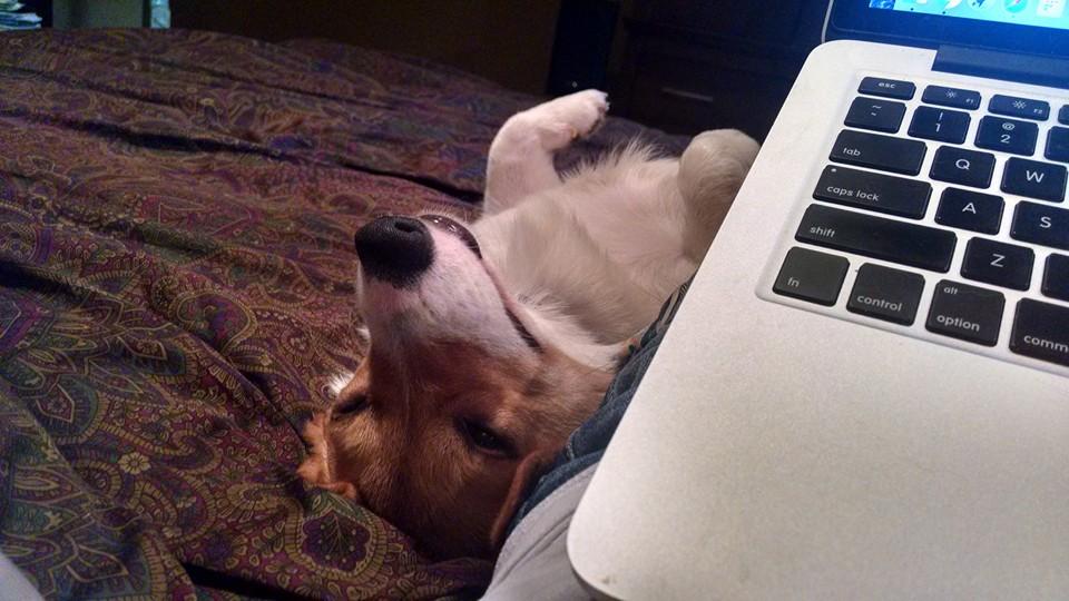quinn at computer