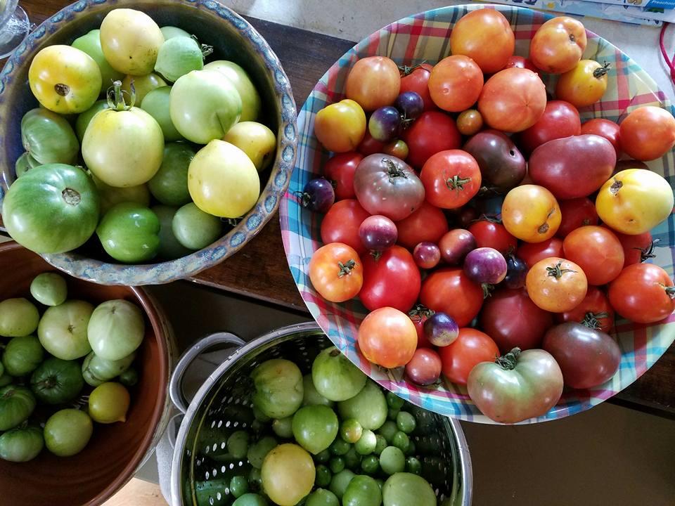 tomatohaul-16th-st-hts