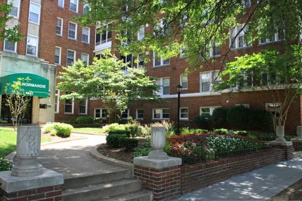 Georgia Avenue at Butternut