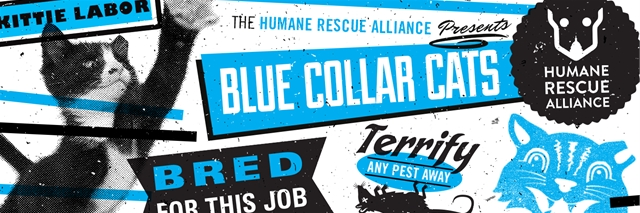 hra blue collar