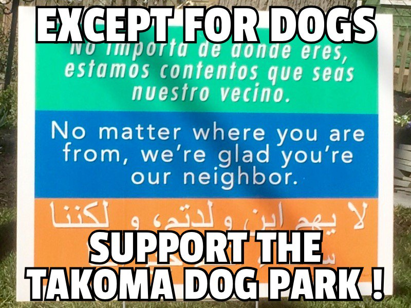 except dogs